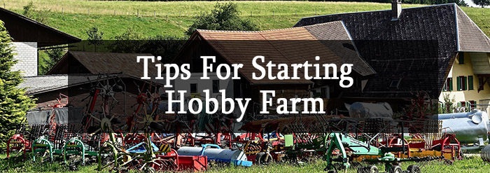 Tips For Starting Hobby Farm