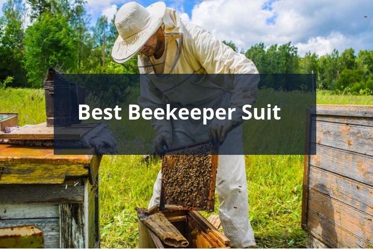 Best Beekeeper Suit 2018