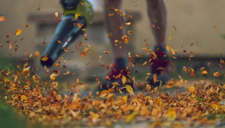 Leaf Blower