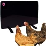 Cozy Coop Chicken Coop Heater