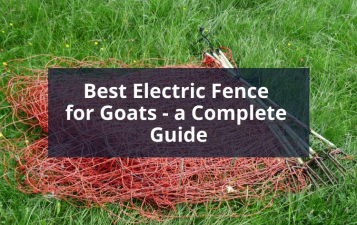 Best Electric Fence for Goats - a Complete Guide